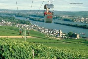 Wilhelm Weil – The Rheingau – Wine for the region, wine from the region