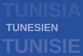 SE Jens Uwe Plötner: The Tunisian revolution –  The path to democracy